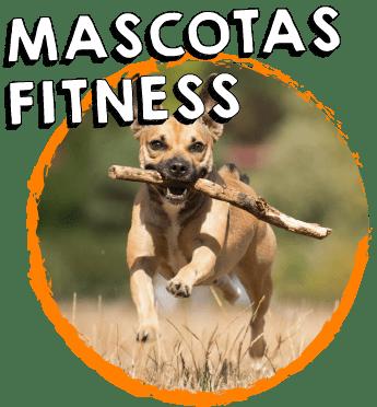 mascotas ultima 1